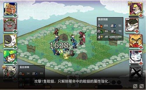 【喵将】信喵新新版先行卡剑圣猫泉信纲